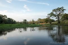 ハバラナ (GenJapan1986) Tags: 2016 fujifilmx70 srilanka 旅行 travel スリランカ ハバラナ habarana 空 反射 風景 sky reflection landscape