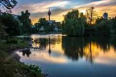 Schwanenspiegel (Moritz Padberg) Tags: dsseldorf duesseldorf sunset sun lake leefilters longexposure langzeitbelichtung lighttrails landscape