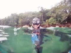 GOPR5939 (ambrogi_taubate) Tags: naturezaselvagem marinha mergulhando ubatuba sp brasil naturezamarinha fantstica apneia 10m setembro primavera 2016