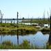 Parc national de la Pointe-Taillon - 03