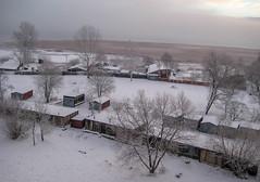 Snow Morning
