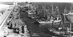02_Port Said - Port Scene (usbpanasonic) Tags: canal northafrica redsea egypt portsaid mediterraneansea egypte  suez egyptians ismailia egyptiens portscene