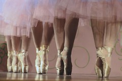 Repeated Pointes (Read2me) Tags: dance performer stage feet repetition skirts pink row shoes thechallengefactory herosweep superherowinner pregamewinner challengeyouwinner friendlychallenges storybookotr thepinnaclehof tphofjanuary2015 ultraherowinner challengeclubwinner agcgwinner flickrchallengewinner gamewinner challengegamewinner kanchenjungachallengewinner gamex2 x2 storybookttw x3 megachallengewinner thumbsupwinner bigmomma agcgcrèmedelacrèmechallenge ultimategrindwinner 15challengeswinner 15challenges achallengeforyou yourock creme agcgcrèmeofthecropchallengewinner 13e cy2 perpetualchallengewinner superherohonors 2thumbs