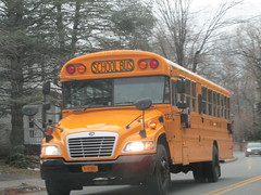 Red Hook CSD #122 (ThoseGuys119) Tags: vision bluebird fe schoolbus redhookny redhookcsd