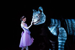 Your reaction: Alice's Adventures in Wonderland 2014
