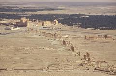 Palmyra. (richard.mcmanus.) Tags: ancient ruins roman historic unesco syria classical palmyra mcmanus tadmur