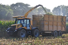 New Holland FR9080 Forage Harvester filling a Broughan Engineering Silage Trailer drawn by a JCB 3230 Fastrac Tractor (Shane Casey CK25) Tags: county new autumn ireland horse irish tractor holland field work cow hp corn nikon traktor power jcb cattle cut farm cork farming working engineering crop cutting land crops feed farmer trailer agriculture drawn silage contractor maize harvester filling tracteur trator forage fodder trekker 3230 agri d90 tillage ciągnik fastrac traktori castlelyons coolagown broughan fr9080
