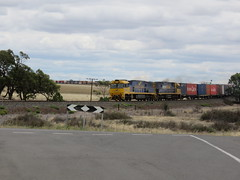 A quick one out the car window.. (Barking Spiders) Tags: nr pn freighttrain pacificnational containertrain australiantrains australianlocomotives nr25 nr76 australianfreighttrain nrclassloco murtoastation