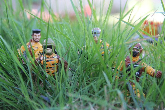 Tiger Force squad