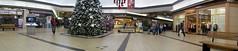 Central Mall @ Christmas (buickstyle232) Tags: retail malls kansas christmastrees salinaks shoppingmalls centralmall shoppingcentersandmalls