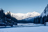 Winter Water (djking) Tags: trees winter moon canada nationalpark alberta banff bowriver waterice
