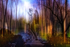 Lovers of Truth (LotusMoon Photography) Tags: art angel photomanipulation lights poem textures creation photomontage layers rumi loversoftruth
