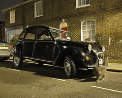_C0A4970R Two Horses and One Cat, Jon Perry - Enlightenshade, 17-2-15 zaj (Jon Perry - Enlightenshade) Tags: street london night cat darkness citroen streetscene 2cv londonnight deuxchevaux 17215 jonperry enlightenshade arranginglightcom 20150217