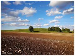 Auf der Schwäbischen Alb (almresi1) Tags: sky germany feld wolken acker hügel badenwürttemberg schwäbischealb sonnenbühl