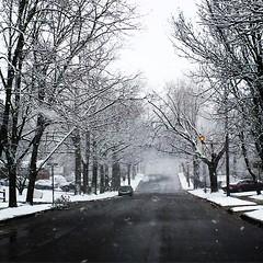 #Winter #2015 Is Still Trying To #HangOn In #LongIsland #NewYork #FirstDayOfSpring #Snow #Snowstorm (hogophotoNY) Tags: cameraphone blackandwhite bw usa newyork square march us unitedstates lofi longislandny longisland squareformat newyorkstate eastcoast longislandnewyork hogo hogophoto iphoneography longislandnyusa instagramapp uploaded:by=instagram hogophotony march2015snowstorm