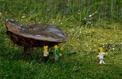 Hurry....get out of the rain! (lbruce2) Tags: mushroom rain nikon lego legoman 300mmf4 d7000