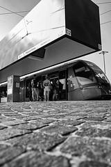 2016168 (ruggeroranzani_RR) Tags: people digital blackandwhite leicame voigtlanderultron28mmf2 tramstop ratseyeview