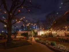 The backyard (karinavera) Tags: travel nikond5300 backyard night brooklyn street urbanexploration lukeslobster newyork manhattan longexposure cityscape city