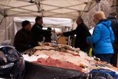 fish (pamelaadam) Tags: thebiggestgroup fotolog digital winter february 2015 people lurkation visions meetup aberdeen scotland