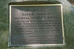 2016-07-17 Rachael Carson NWR (46) (Paul-W) Tags: vacation birds river march marine walk maine wells hike estuary trail saltmarsh saltpan 2016 rachelcarsonnationalwildliferefuge