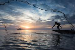 Catch of the day (wu di 3) Tags: net sunrise thailand fishing fisherman southeastasia catch kelong phatthalung