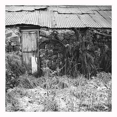 The house down the Road - Ilford  XP2 (magnus.joensson) Tags: hasselblad 500cm zeiss distagon 60mm cfi ilford xp2 super black white negative film scotland isle skye c41 exp redfilter