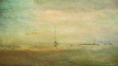 Douce soire au Cap d'Antibes (jeanfenechpictures) Tags: sea mer bateau boat ciel sky clouds nuages voilier sailmaker yacht horizon antibes cap france cotedazur plage beach capdantibes soire evening