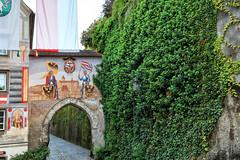 160520_194314_AB_4155 (aud.watson) Tags: europe austria steyr ennsriver steyrriver oldcity citygate coatofarms