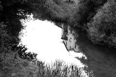cardona (NOonionplease) Tags: cardona catalonia reflexes reflection river cardener riu rio vegetacion vegetation