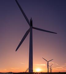 Wind Turbines at Sunset (SimonBaker5) Tags: wind d750 england sunset 20mm windfarm evening clouds countryside silhouette windturbine windgeneration oxfordshire greenengery turbine shrivenham electricitygeneration uk renewableengergy