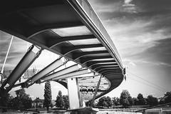 Under the Bridge (Lasorigin) Tags: jardindesdeuxrives strasbourg pont arbre soleil bridge tree water eau architecture cloud steel wood mtal bois corde rope noirblanc nb blackwhite bw canon eos 100d 18135mm france