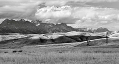 Teton Range from National Elk Refuge (David C. McCormack) Tags: americana artistic blackwhite bw blackandwhite monochrome country eos6d eos environment western tetons west grandtetonnationalpark grandteton inspiration jacksonhole jacksonwyoming landscape mountains nationalparks outdoor rural rockymountains wyoming