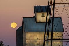 Kansas Morning (MattGerlachPhotography) Tags: moon morning early sunrise barn full dawn light purple