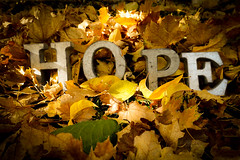 Hope in Autumn (wrachele) Tags: autumn leaves yellow gold brown green red words hope