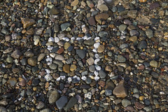 Pebble Square (brucetopher) Tags: square pebbles stones rocks gravel colorful beach pattern texture shape squared rocky white geometry geometric basic flickrfriday