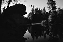 Griff // Idyllwild, CA (Godspeedphoto) Tags: godspeedphoto nature naturephotography cliffdiving outdoors reflections