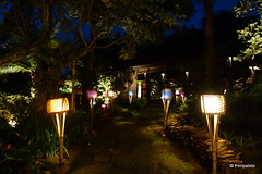 DSC06491 (Peripatete) Tags: bali canggu resort beach desaseni nature flowers fullmoon culture tradition architecture food