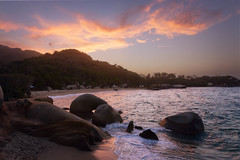 Arriving the paradise (tristan29photography) Tags: arrenillas colombie colombia columbia parquetayrona parctayrona tayrona tayronanationalpark tristan29photography wow