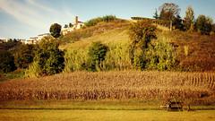 Le langhe ... (Augusta Onida) Tags: sandamianodasti langhe roero piemonte panorama landscape albero tree trattore tractor patrimonio unesco heritage