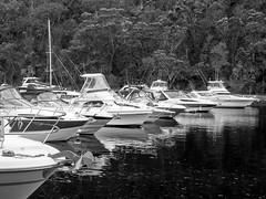 West Point 2014-12_0859.jpg (travischauphotography) Tags: sydney australia natinalpark westheadlookout akunabaymarina westpointlookout
