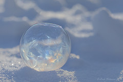 Frozen Bubble (Lindaw9) Tags: winter sun snow ontario macro frozen frost colours bubble designs northern 27c