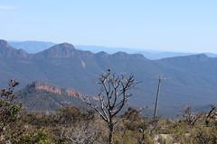 Grampions Mount William (Spiranthes2013) Tags: sky mountains nature clouds landscape view natur himmel wolken australia victoria berge judith australien aussicht landschaft becker viktoria 2014 grampions mountwilliam