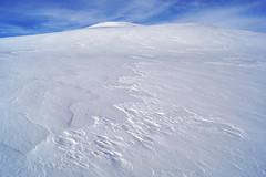 (randihausken) Tags: winter snow vinter wind sn vind dagalifjell