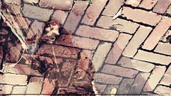 Bella desde todos los angulos (Sebas Fonseca) Tags: street city people urban holland reflection water girl amsterdam vintage mirror mujer agua nikon flickr chica ciudad retro espejo reflejo holanda urbano edam pensativa d7000 sebafonseca