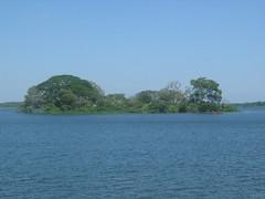 Detagamuwa Wewa Kataragama Sti Lanka