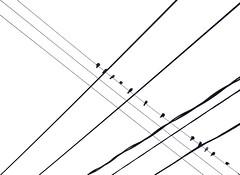 crossing lines (Mr.  Mark) Tags: urban bw bird lines contrast photo wire pattern cross geometry stock x highkey markboucher