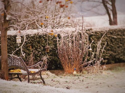 our lovely vintage garden