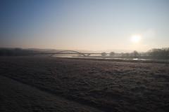 Kalte Elbwiese (MadCyborg) Tags: mist backlight sunrise dresden frost fuji nebel tsf wsb fujifilm sonnenaufgang elbe backlighting gegenlicht 051 x100 elbwiesen rawtherapee waldschlöschenbrücke