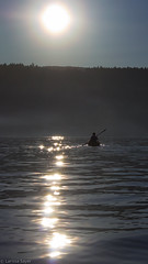 Into The Light (Larssa) Tags: ocean light people sun canada reflections boat spring kayak shine britishcolumbia sparkle kayaking saltspringisland 2015 gangesharbour