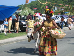 Carrot Bay Festival Donkey